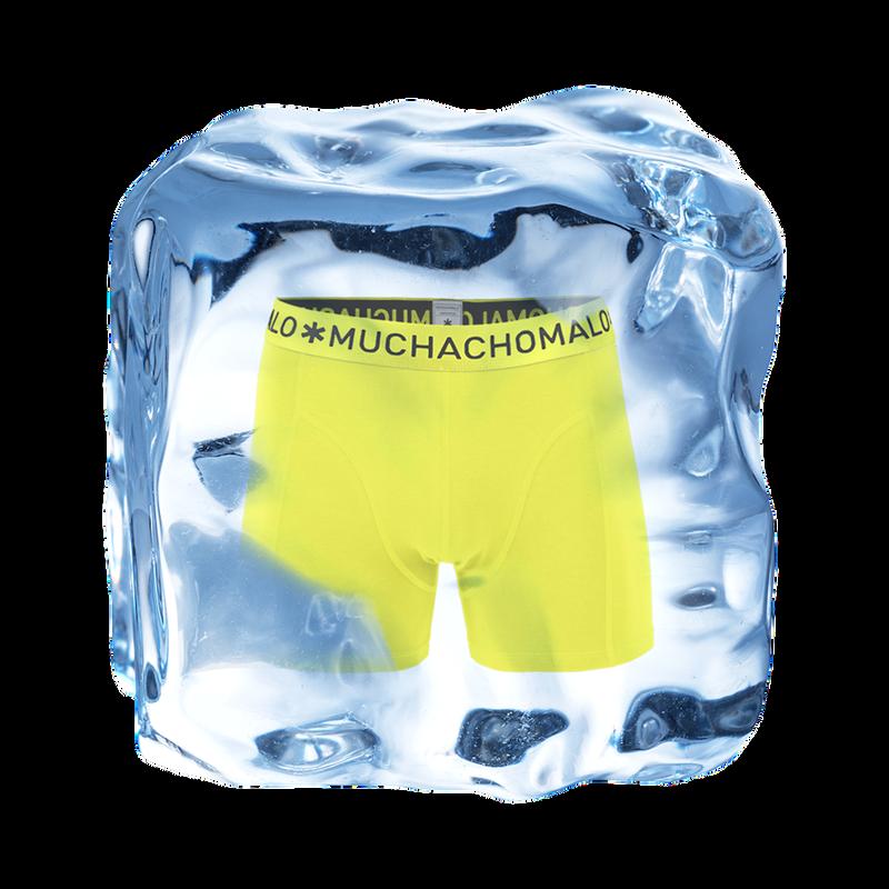 Men 1-pack short lime 2