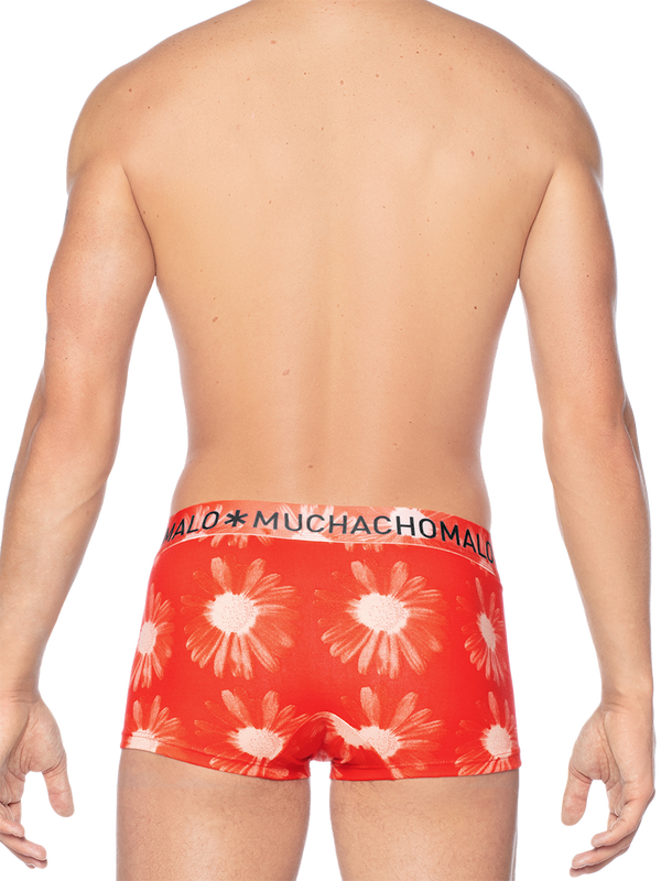 Men 2-pack trunk Flower Power