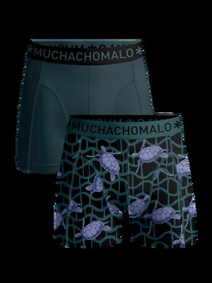 Men 2-pack boxer shorts Turtle