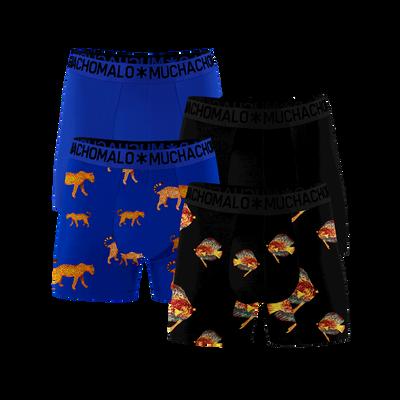 Men 4-pack boxer shorts Leopard Fish
