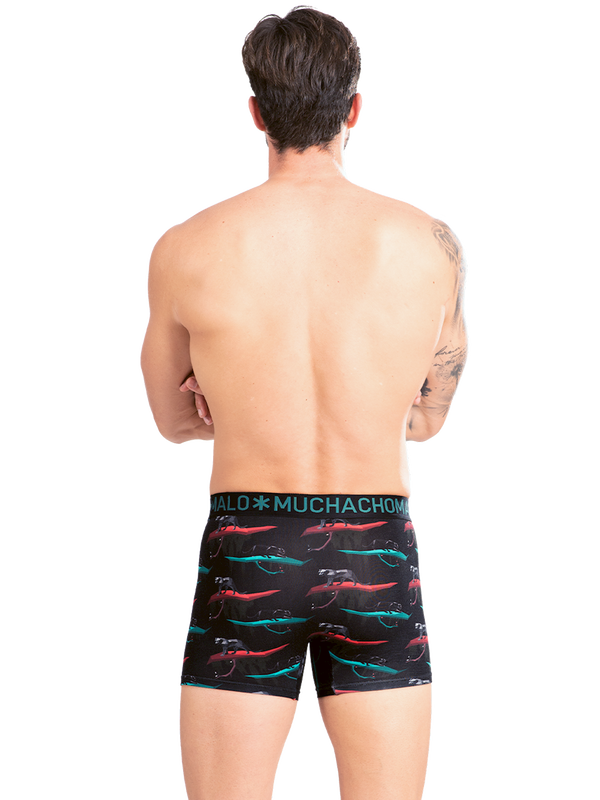 Men 2-Pack short print/solid 4