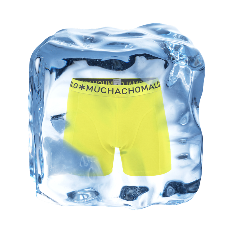 Men 1-pack short lime 2