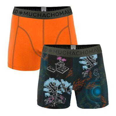 Heren 2-pack boxershorts Back to Basic